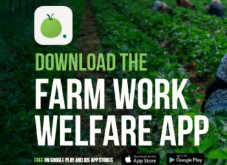 App allows public to report modern slavery on farms